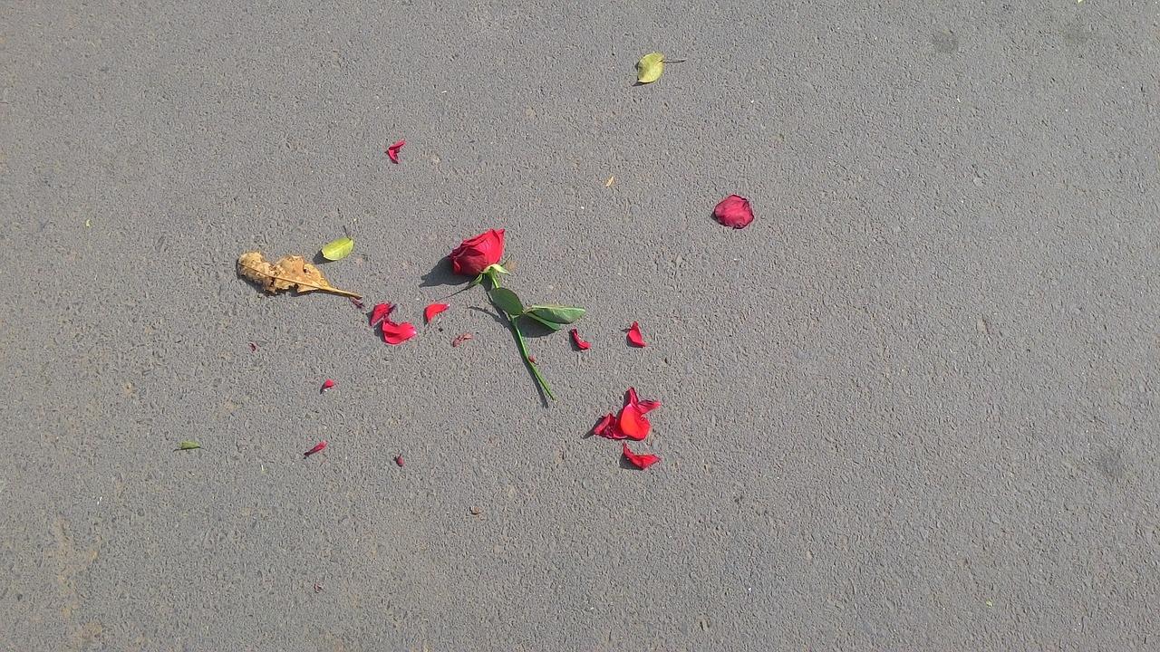 失恋を忘れる方法!未練を乗り越えるためのステップと対処法とは